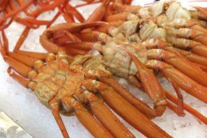 紅ズワイガニ美味しく激安の村中水産は1枚800円でもウマイ!