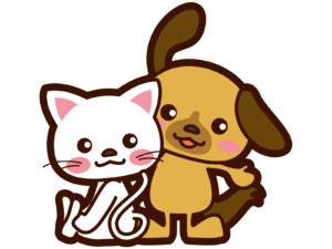 ペットケアを学んでおけば犬や猫が加齢や病気になっても安心です!