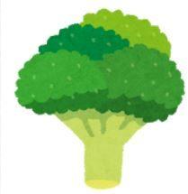ブロッコリーの種類と栄養&おすすめの調理方法