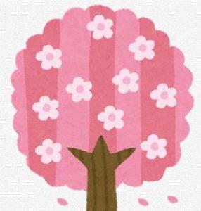 桜名所の淡墨桜をライブカメラでお花見しませんか!?